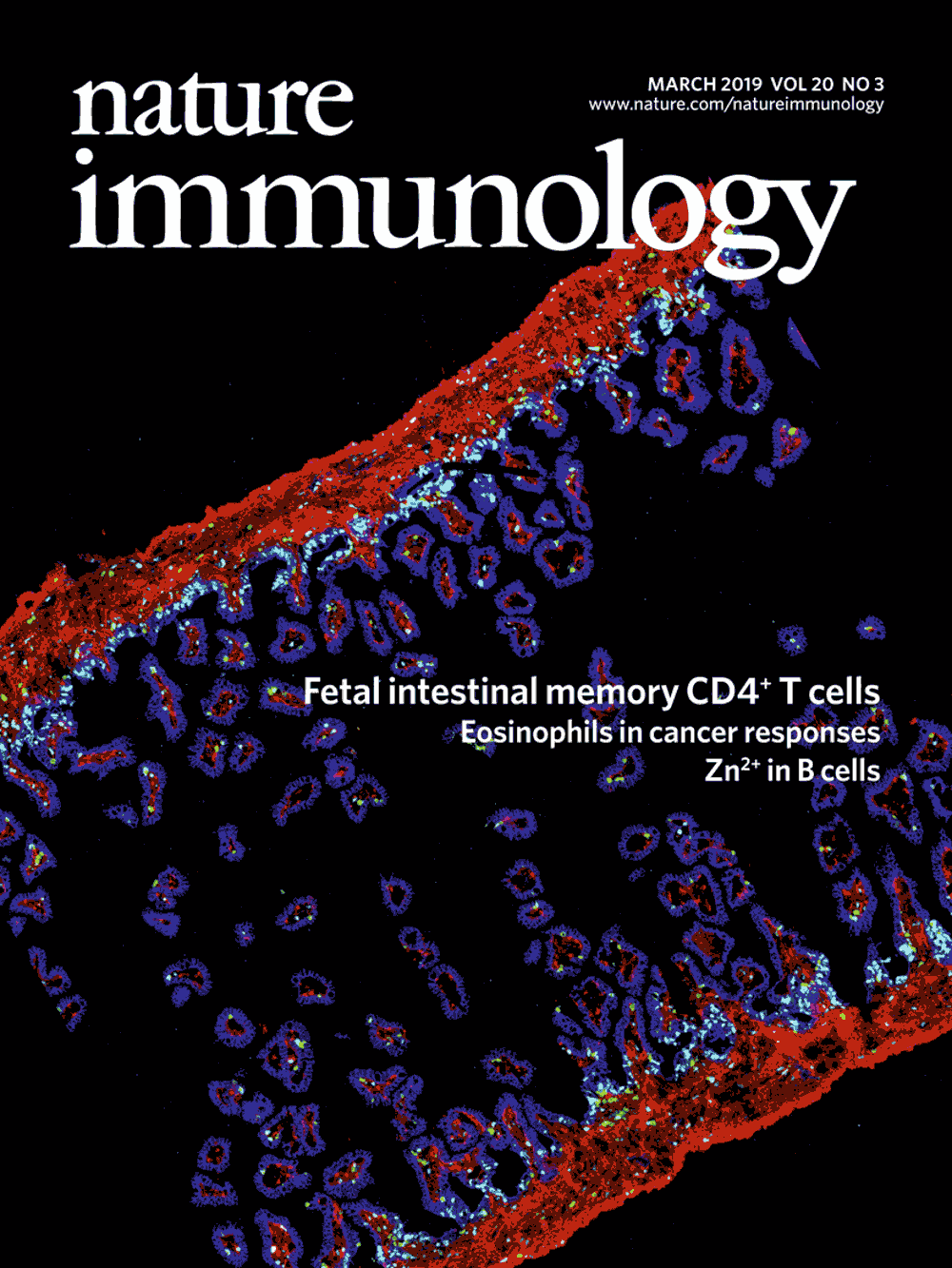 Nature Immunology, March 2019, Cover Image